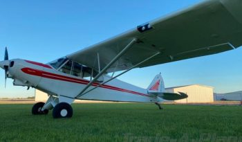 1959  Piper Super Cub full