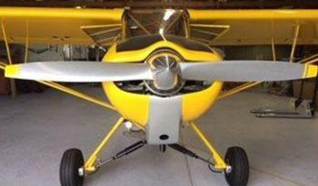2011  Piper Super Cub full