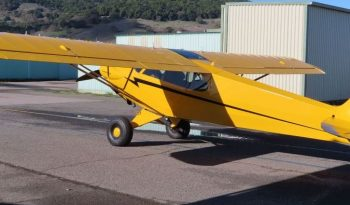 2014  Cubcrafters Carbon Cub full